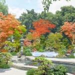 Oedo-Onsen Monogatari Unveils Their New Garden Footbath