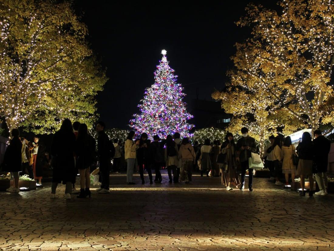 Ebisu Garden Christmas Illumination
