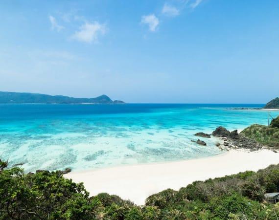 Kyushu Amami Islands