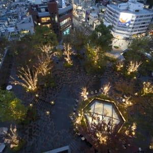 Omotesando Rooftop Beer Garden Food Nightlife Tokyu Plaza Tokyo Weekender
