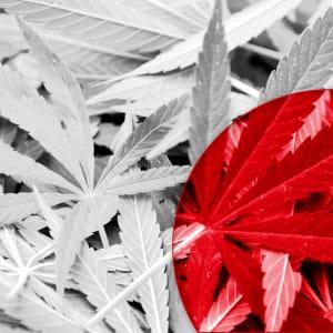 Marijuana laws japan