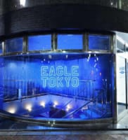 Eagle Tokyo Blue