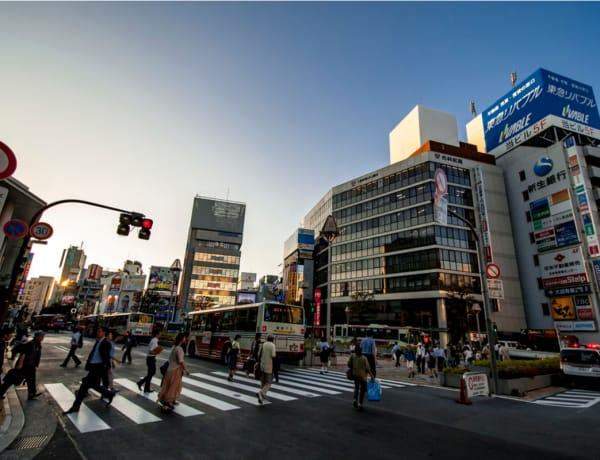 new in kichijoji