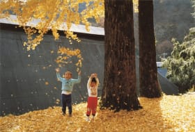 Tazuko Masuyama Portrait Tobikan Walls & Bridges Tokyo Metropolitan Museum of Art
