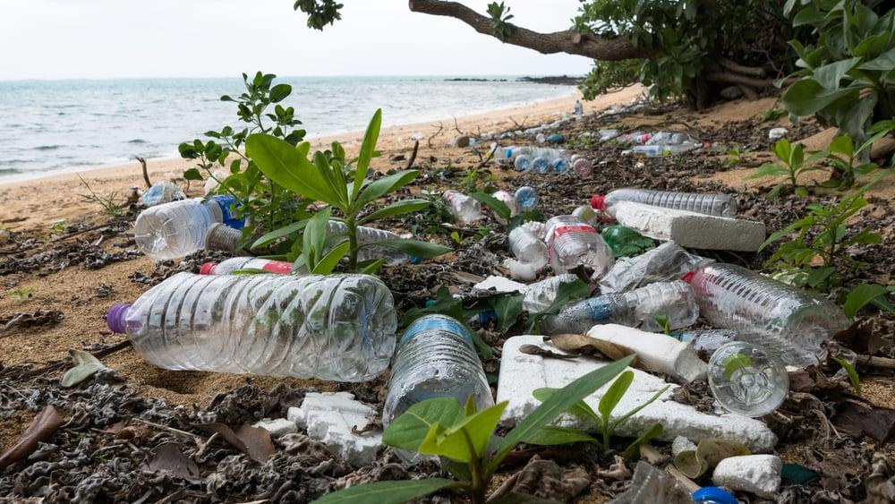 Marine litter and plastic pollution in Ishigaki, Okinawa
